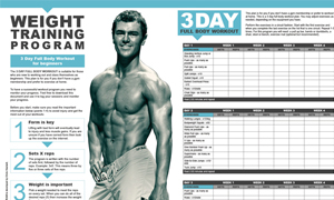 weight training program 3 day full body workout for beginners