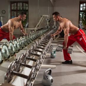 Daniel Hammaecher training