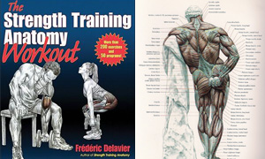 The Strength Training Anatomy Workout – book review