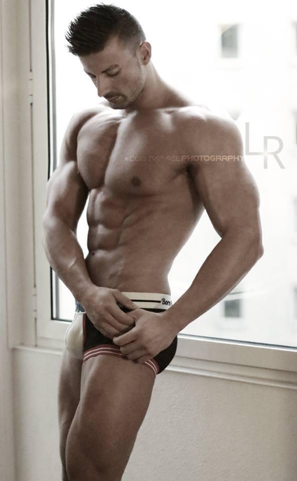 Daniel Hammaecher